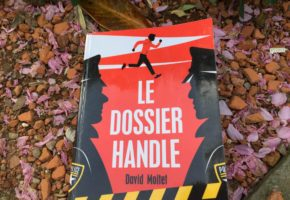 Le dossier Handle de David Moitet