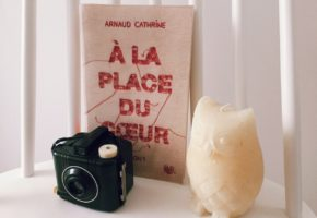 A la place du coeur d'Arnaud Cathrine