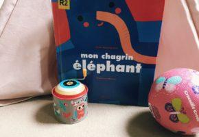 Mon chagrin éléphant de Cécile Roumiguière et Madalena Matoso